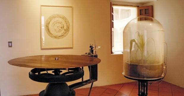 """""""Desmodium Máquina"""", grabado en cobre de la respiración de las plantas (2012)"""