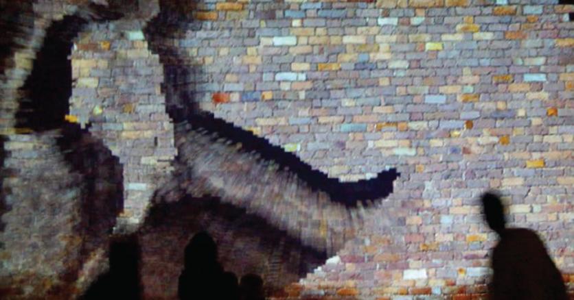 """""""Efusión: código y producción de sentido"""" Curaduría internacional (2015)"""